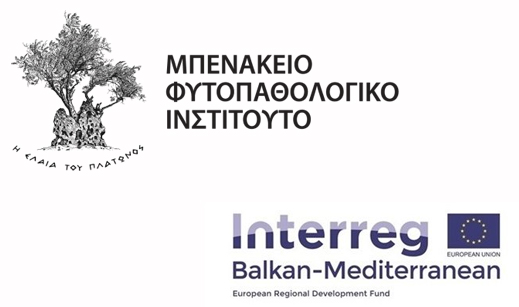Interreg meeting organisation in Athens – Benaki Phytopathological Institute